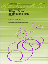 Allegro From Beethoven's Fifth (Movement 1)